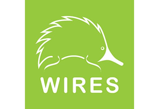 WIRES (NSW Wildlife Information Rescue and Education Service)